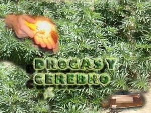 cannabisgy1