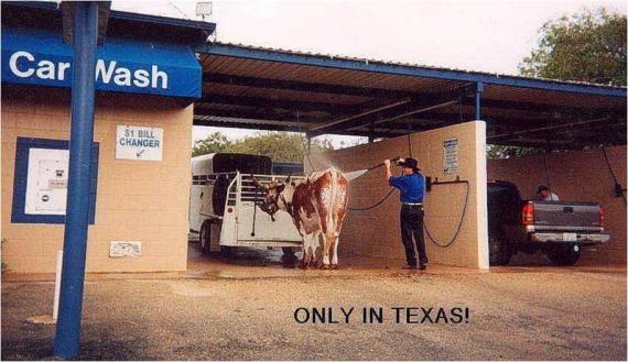 Solo en Texas!!! (Y de seguro a de lavar su camioneta en el granero... ¡Chale's!)