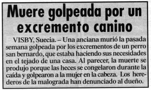 4128_Muero_por_culpa_de_una_caca_de_perro