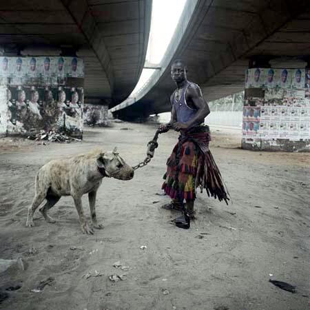 criando-hienas-15